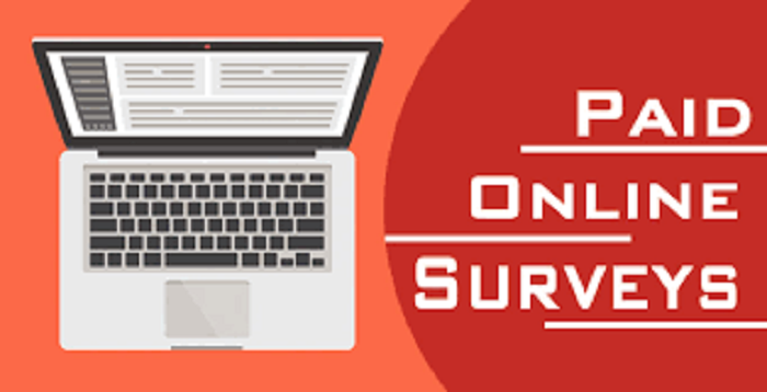 Are Online Surveys Worth It?